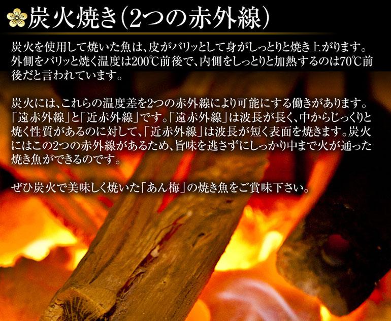 炭火焼(2つの赤外線)